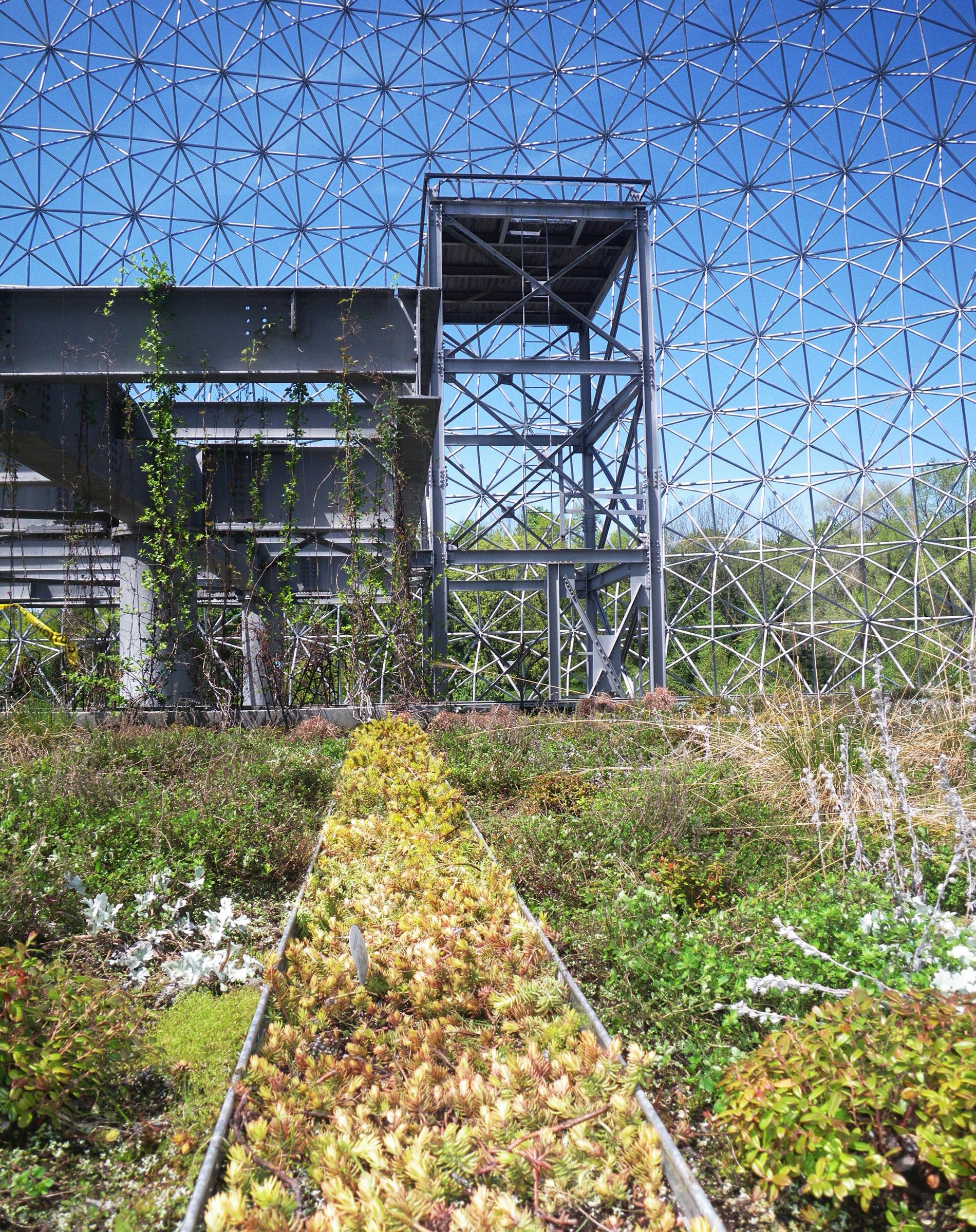 1-mr-2-biosphere