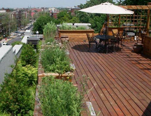 Terrasse et toit vert ELT – Résidence privée d'Outremont